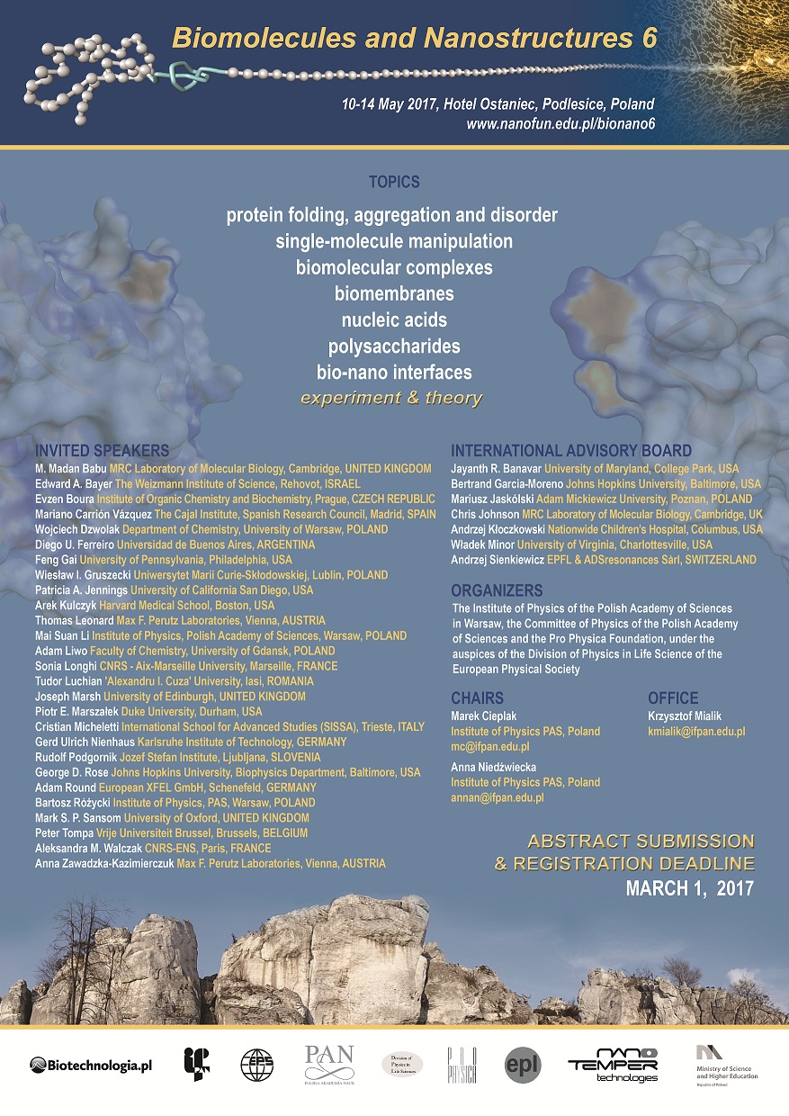 Conference Poster - Biomolecules and Nanostructures 6